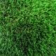 Tappeto di erba sintetica POA 50
